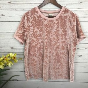A New Day Pink Blush Floral Velvet Brocade Top -U7